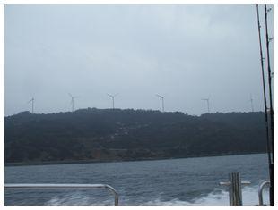 佐田岬の風車群